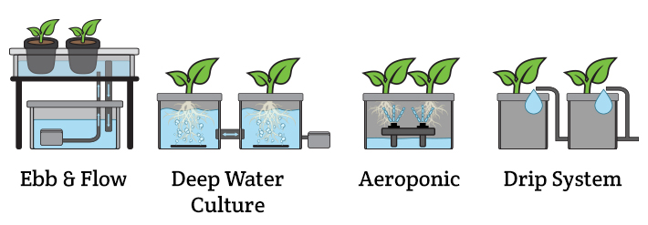 The different types of hydroponics systems: ebb and flow, aeroponic, DWC, drip system.