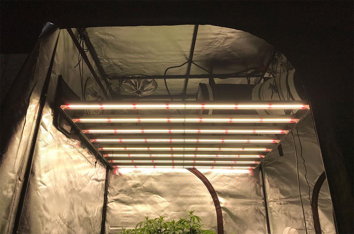 Gavita Pro 1650e Led Grow Light Full Spectrum Led Grow