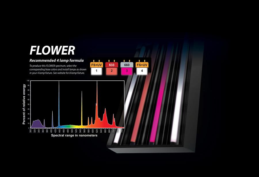 Eye Hortilux PowerVEG 420 4 ft 54 watt HO T5
