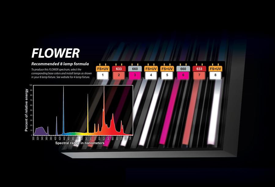 Eye Hortilux PowerVEG 633 4 ft 54 watt HO T5