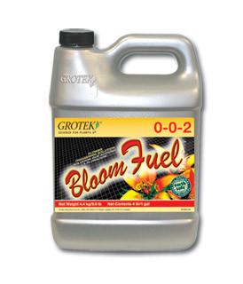 Bloom energy stock options