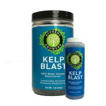 Supreme Growers Kelp Blast