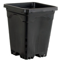 "6""x6"" Square Black Pot, 8"" Tall, 50 per case"