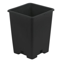 Gro Pro Black Plastic Square Pot, 5 x 5 x 7 in
