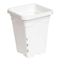 "5""x5"" Square White Pot, 7"" Tall, 100 per case"
