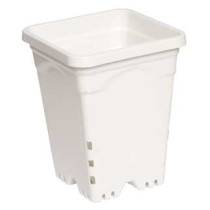 "7""x7"" Square White Pot, 9"" Tall, 50 per case"
