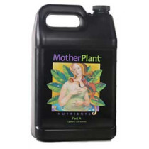 MotherPlant A Gal