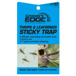 Grower's Edge Sticky Thrip Leafminer Trap 5/Pack