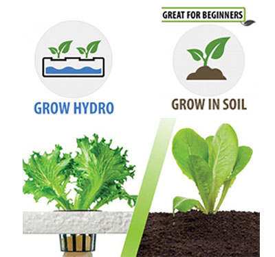 Choose your grow method - soil and pots or a hydroponic system
