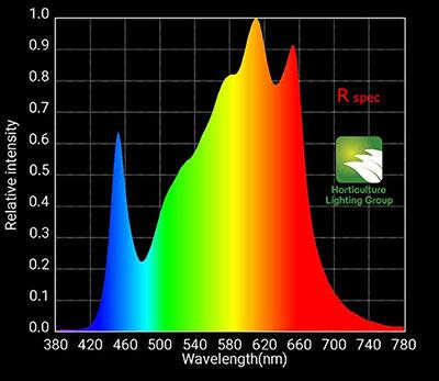 Rspec Spectrum