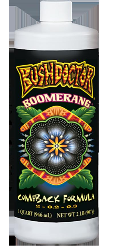 Bush Doctor Boomerang