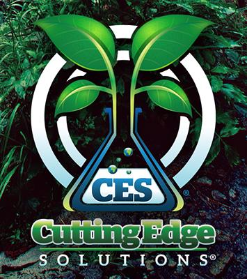CES Watermark
