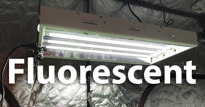 Fluorescent grow light