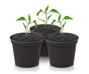 Super Closet Soil Pots