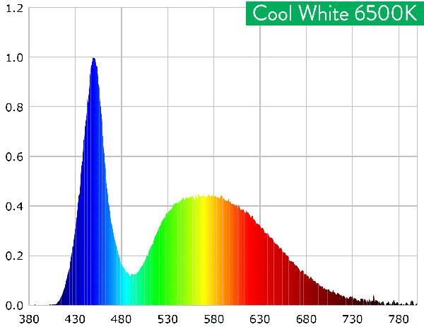 Cool White 6500K