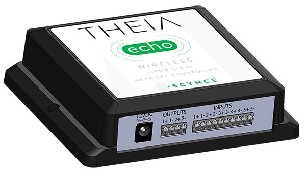 Theia Echo
