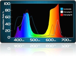 KIND LED Spectrum