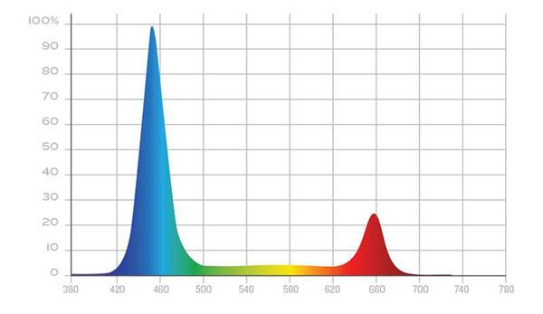 KIND Veg Spectrum