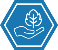 Craft Cultivation Icon