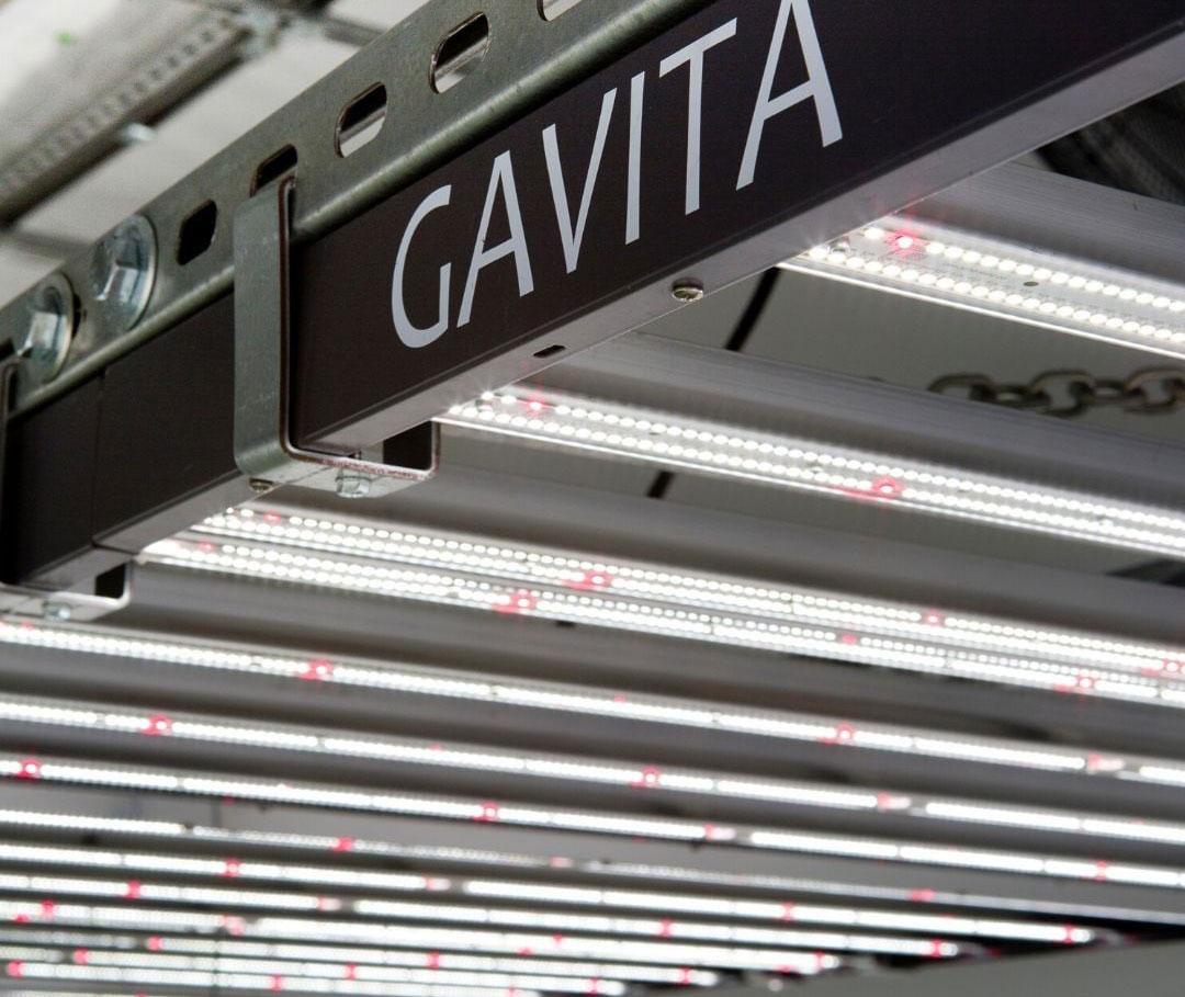 Close Up Gavita 1700e