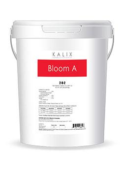 Kalix Bloom A/B