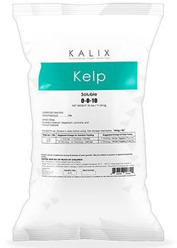 Kalix Kelp