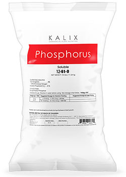 Kalix Phosphorus