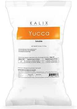 Kalix Yucca