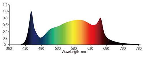 White Bar Spectrum