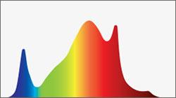 PHOTOBIO S4 Full Spectrum