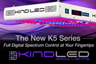 KIND LED on Sale