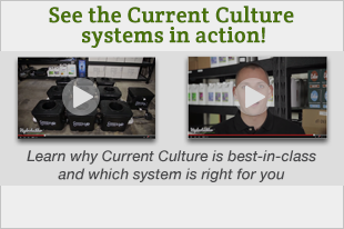 Current Culture Videos at Hydrobuilder.com