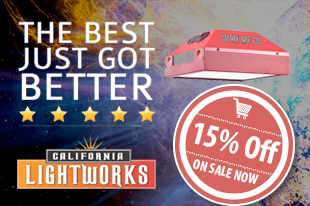 Save on California Lightworks