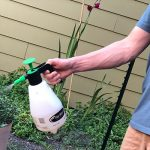 The Best Garden Sprayer Of 2020