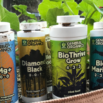 Best Plant Nutrients Of 2020