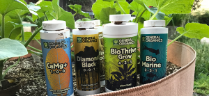 Best Plant Nutrients Of 2019