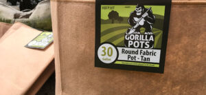 The Best Garden Pots For Hydroponics and Traditional Growing