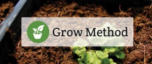 Determining your growing method