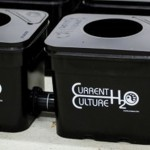 Spotlight - Current Culture H2O Hydroponics Systems