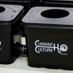 Spotlight - Current Culture H2O Hydroponics Systems