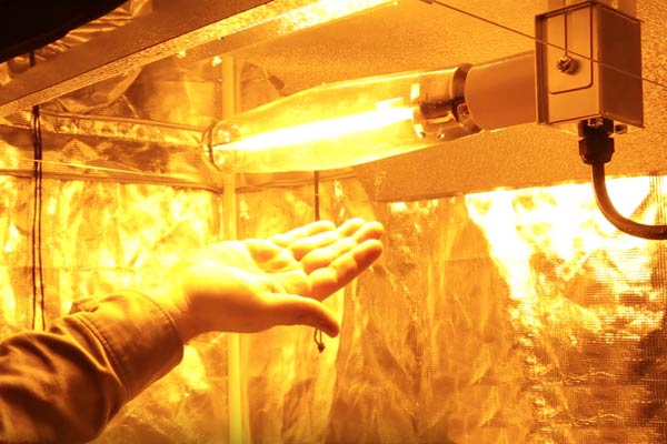 How To Properly Deal With Heat And Odor In A Grow Room?