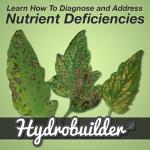 Diagnosing Nutrient Deficiencies