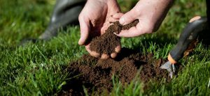 Garden Soil and Nutrient Solution Testing - pH, TDS, and More!