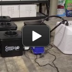 How To Install a water chiller to your Hydroponic system
