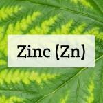 Zinc (Zn) Nutrient Deficiencies