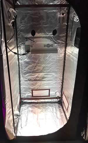 What's Better For Growing - LED or CMH Grow Lights?