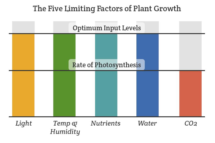CO2 Limiting Factors