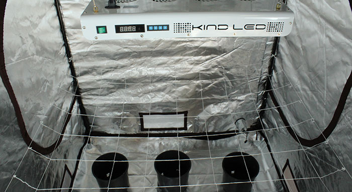 clean grow tent