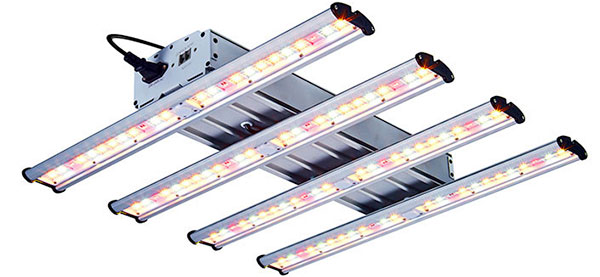 Best beginner LED grow light