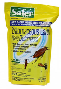 Diatomaceous earth can help you get rid of cabbage worms in the garden